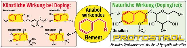 Vergleich anabole Wirkung